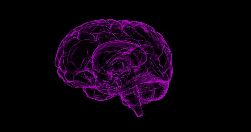 le cerveau c'est ennemi qui vous veut du bien