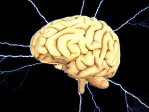 L'Inconscient possède ses propres modes de fonctionnement.Il perçoit, ressent, pense et réagit de façon autonome.